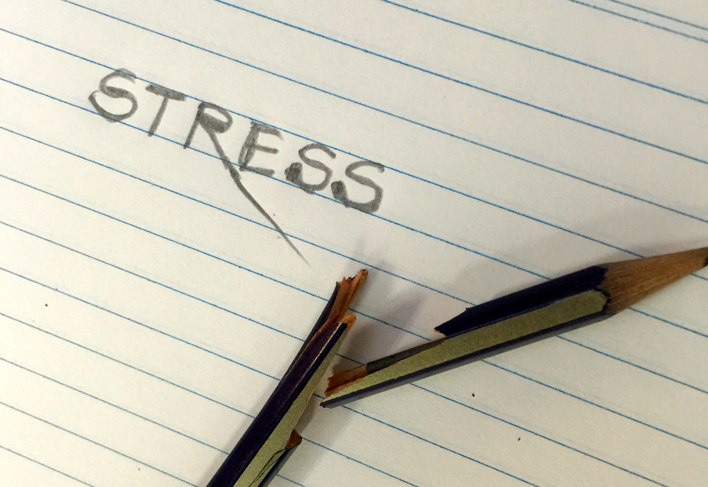 Stress – Friend or Foe?