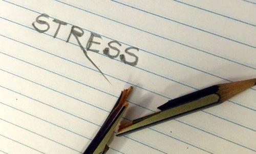 Stress – Friend or Foe?